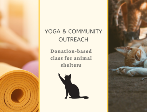 Yoga zugunsten von Tieren | Yoga supporting animals